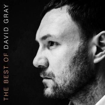 David Gray - The Best Of David Gray (CD)