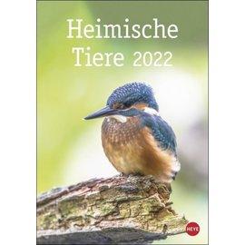 """Kalender """"Heimische Tiere"""" 3035a"""