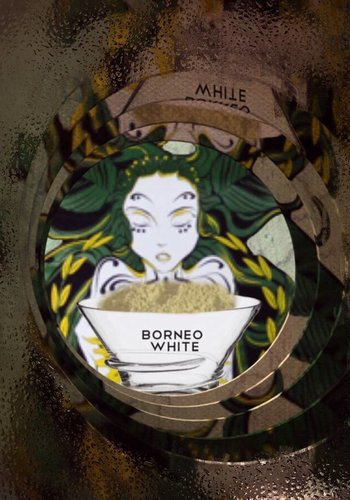Borneo White vein