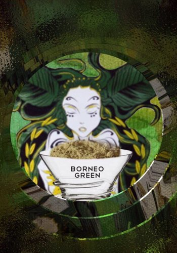Bornean green