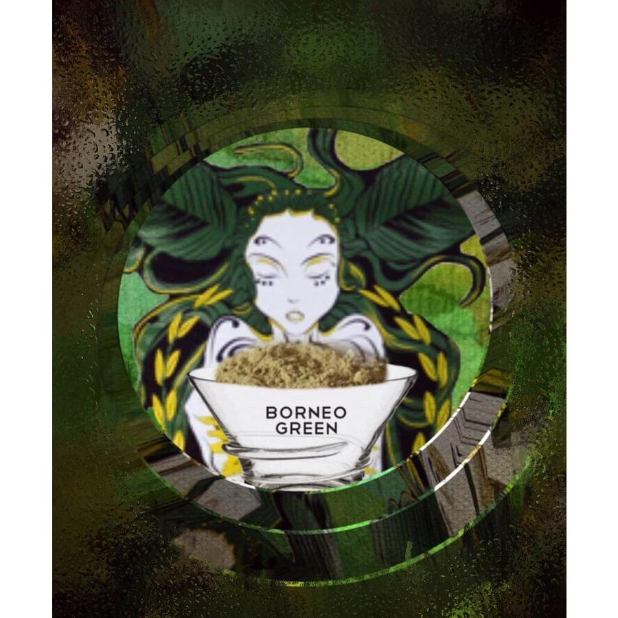 Bornean green vein-2