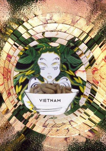 Vietnamese  Kapseln