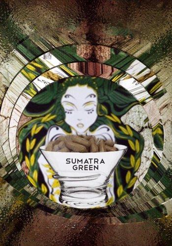 *Nieuw*  Sumatra green  Capsules