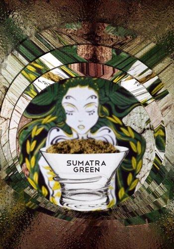 *Nieuw*  Sumatra green