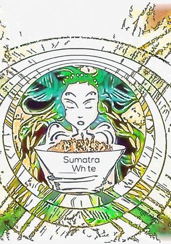 Sumatra white