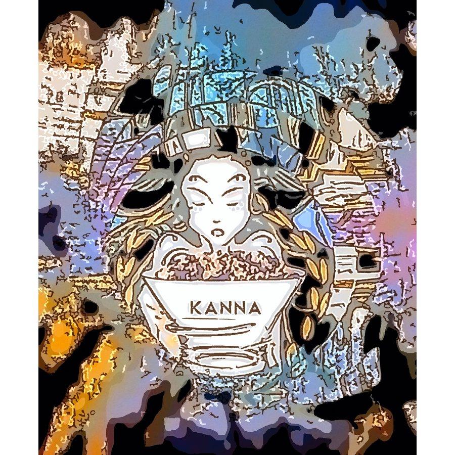 Kanna aus Südafrika.-1