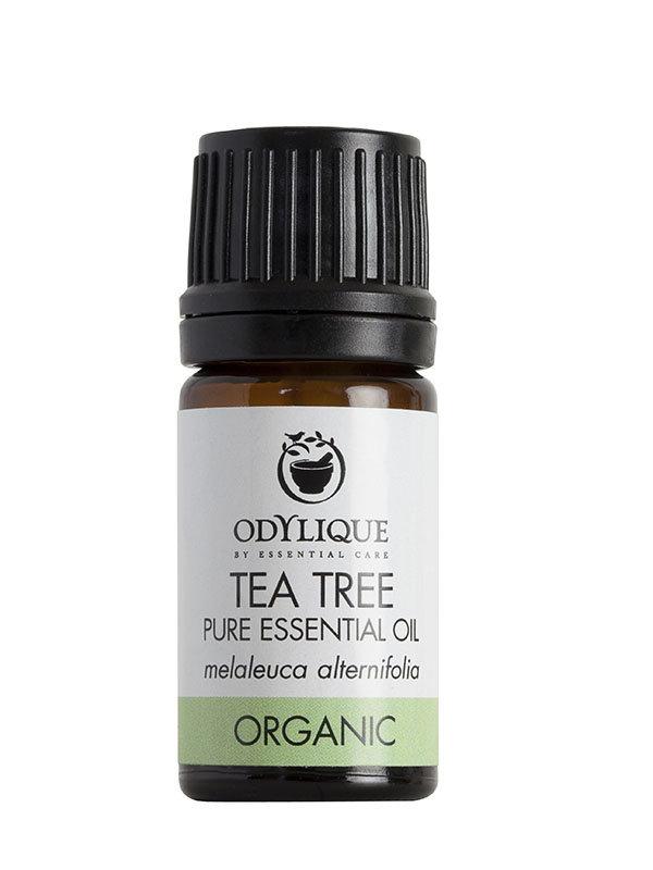Odylique Essentiële Olie Tea Tree