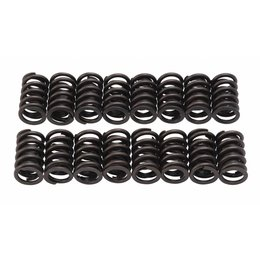 Edelbrock Valve Springs, E-Street Heads, Set of 16