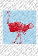 ART-DOMINO® by SABINE WELZ Animals in POP ART - Ostrich