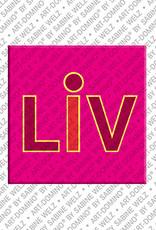 ART-DOMINO® by SABINE WELZ Liv - Magnet mit dem Vornamen Liv