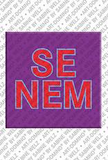 ART-DOMINO® by SABINE WELZ Senem - Magnet mit dem Vornamen Senem