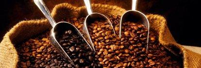 Wissenswertes über Kaffee und Co.