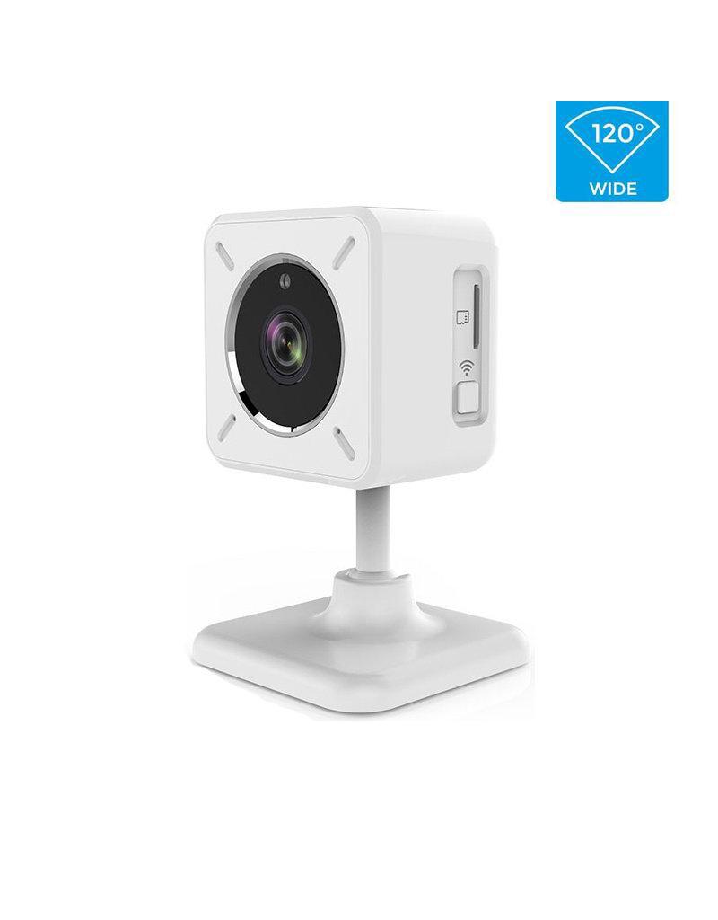 CleverDog Mini caméra CleverDog