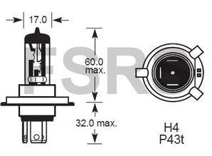Lamp H4 12V-55/60W