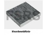 AM Interieurfilter Carbon Opel Omega-B
