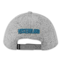 SNAPBACK LIGHT GREY/BLUE