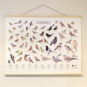 Vogelbescherming Nederland Vogelposter 100 x 70 cm