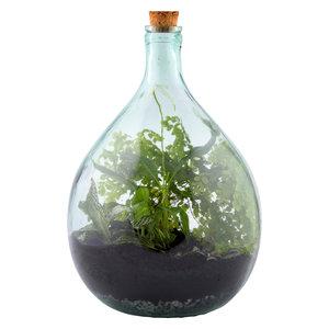 Esschert Design Terrarium fles 5 liter set