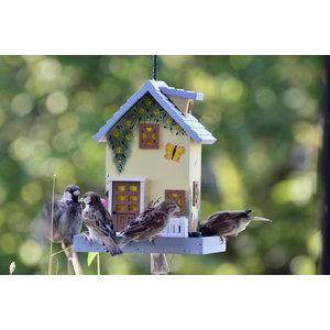 Dobar Wildlife Decoratieve Voederhuis 'Zomer'