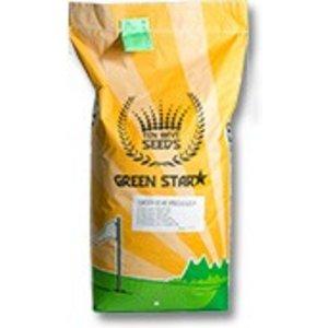 Ten Have Green Star R1 Recreatie 15KG graszaad droge grond