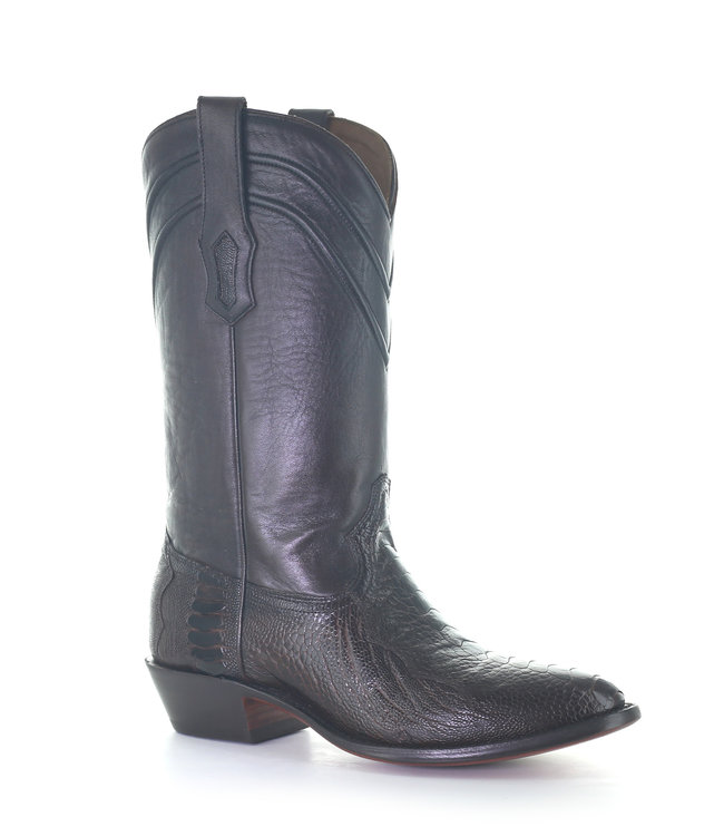 Corral  Dark brown  cowboy boot made of ostrich leather