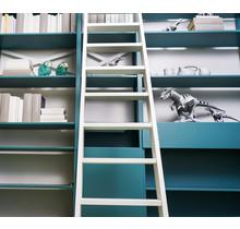 Bibliotheksleiter aus Eichenholz weiß lackiert