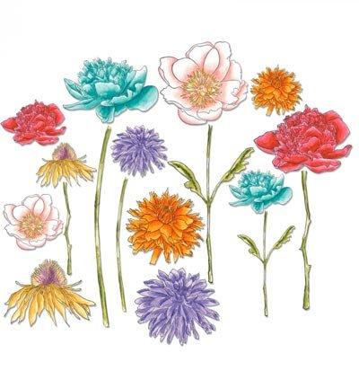 Sizzix Stanzschablone Blumen Garten Ihr Wwwhobby Crafts24 Eu