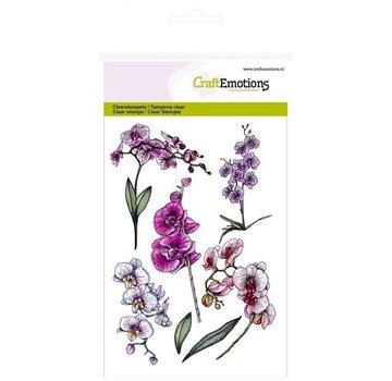 Crealies und CraftEmotions Timbro a motivi A6, trasparente: rami di orchidee