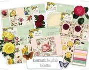Collection 4: Botanicals / Natur
