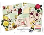 Colección 4: Botanicals / Naturaleza