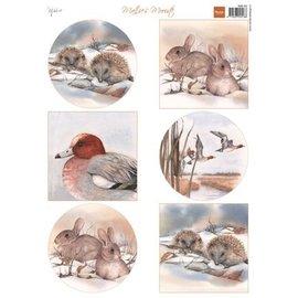 Bilder, 3D Bilder und ausgestanzte Teile usw... A4 Bilderbogen, Tiere