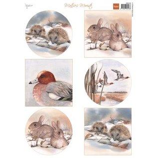 Bilder, 3D Bilder und ausgestanzte Teile usw... A4 broadsheet, Animals