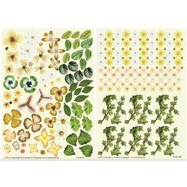 BLUMEN (MINI) UND ACCESOIRES Twin Pack Flowerart, giallo