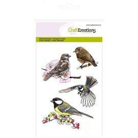Crealies und CraftEmotions Gjennomsiktige stempler: Birds