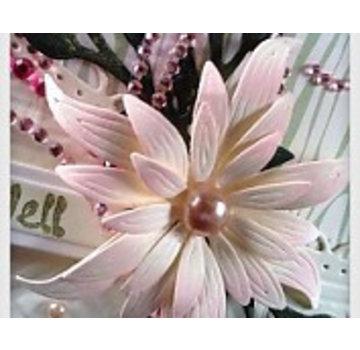 Docrafts / X-Cut Skæring dør dekorative, smukke blomst