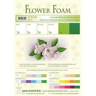Leane Creatief - Lea'bilities und By Lene Set 6, white-green color: Foam Sheet Assortment + instructions