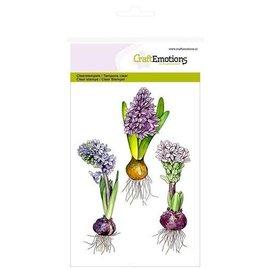 Craftemotions Klar / Gennemsigtig stempel, A6, hyacint