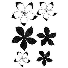 CREATIVE EXPRESSIONS und COUTURE CREATIONS Carimbo transparente, flores