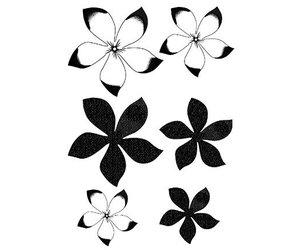Transparente Dovecraft A7/Sellos de Flores