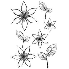 CREATIVE EXPRESSIONS und COUTURE CREATIONS Timbro trasparente, fiori