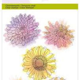 Crealies und CraftEmotions Transparent frimærke, A6, krysantemumblomst