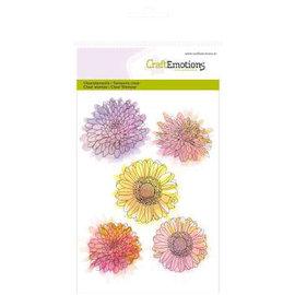 Crealies und CraftEmotions Timbro trasparente, A6, fiore di crisantemo