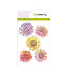 Crealies und CraftEmotions Transparent Stempel,  A6,  Chrysanthemen Blume