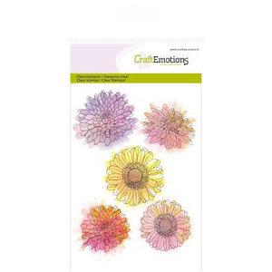 Crealies und CraftEmotions Timbre transparent, A6, fleur de chrysanthème