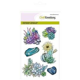 Crealies und CraftEmotions Sello de motivo, transparente, A6, suculento cactus Naturaleza botánica