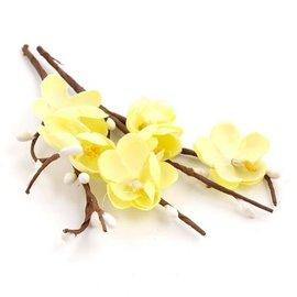 Prima Marketing und Petaloo 3 steli di fiori di ciliegio, colore avorio
