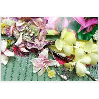 Prima Marketing und Petaloo Scrapbooking Verzierungen, 3 Kirschblüten Stängel, Farbe Elfenbein