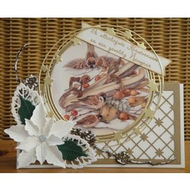 Tattered Lace Plantillas de punzonado, plegado de encaje de Anja: círculo.