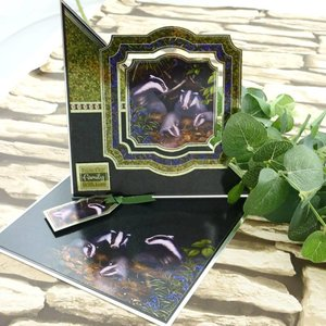 Hunkydory Luxus Sets Mirri Magic Topper Set - Au fond du jardin