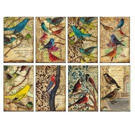 decorer Kaarten en scrapbook papierblok, vogels, 7 x 10,8 cm, 150 gsm